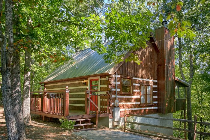 Mountain Moonlight Cabin Rental Photo