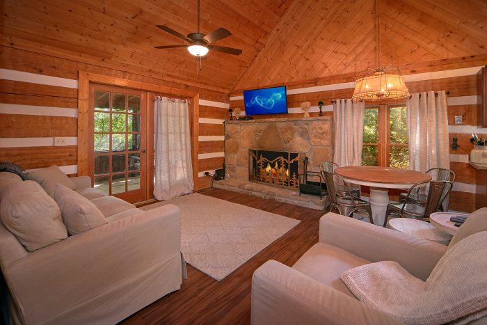 Rustic Cabin with Stone Fireplace and TV - Mountain Moonlight