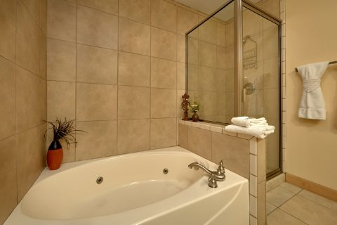 Condo with Private Jacuzzi in Master Bath - Mountain View 5102