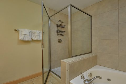 2 Bedroom Condo with Walk In Shower - Mountain View 5706