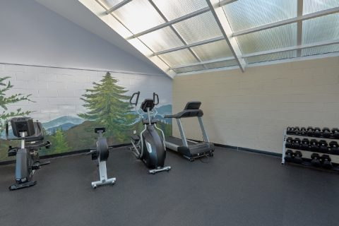 Work Out Area in the Resort - My Pigeon Forge Retreat
