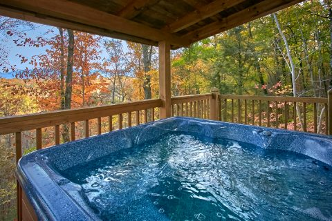 Cozy 2 Bedroom Cabin with Private Hot Tub - Oakland #2