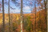 Wooded mountain view from 2 bedroom cabin