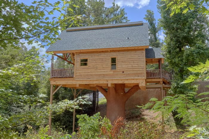 Luxury 1 Bedroom cabin with Resort Pool Access - Out On A Limb