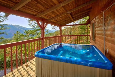 Rustic Cabin with Private Location and Hot Tub - Owl's Mountain View