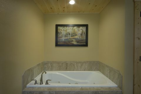 Main Floor Bedroom with Jacuzzi Tub - Pleasant View