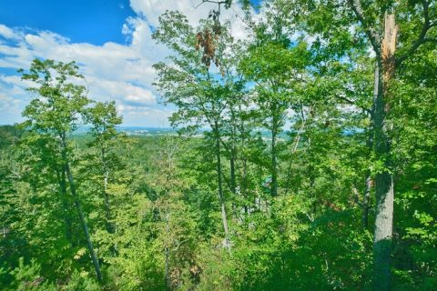 Honeymoon Cabin in Pigeon Forge with Views - Romantic Evenings