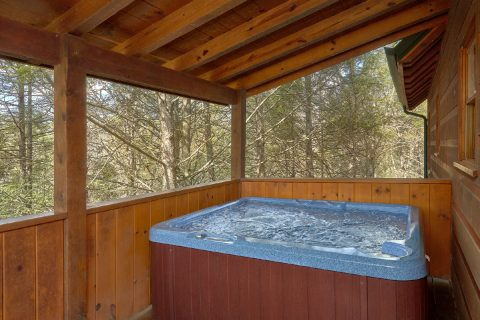 Spacious 3 Bedroom Cabin Sleeps 8 with Hot Tub - Sassy Lady