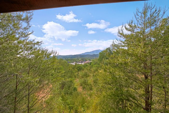 2 Bedroom Cabin with View and Resort Pool - Simply Irresistible