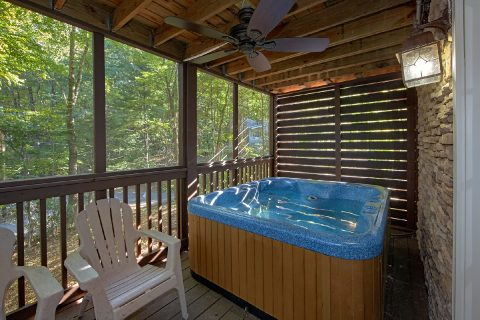 Private Hot Tub 3 Bedroom Cabin Sleeps 8 - Skiing With The Bears