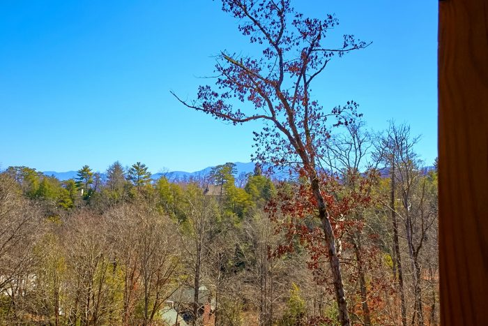 Wooded View from deck of 7 Bedroom Cabin - Smoky Mountain Lodge