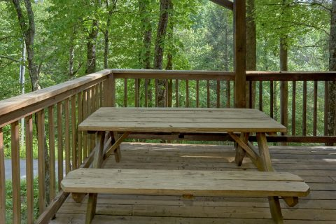 1 Bedroom Cabin with Picnic Table - Smoky Mountain Time
