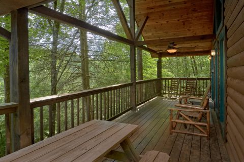 Mountain and Wooded Views - Smoky Mountain Time