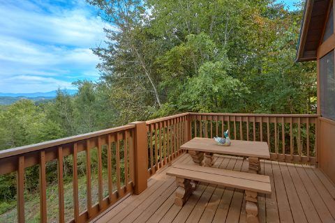 2 bedroom cabin with picnic table on the deck - Sneaky Bear Getaway