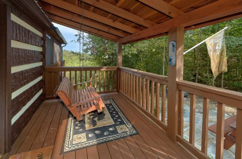 2 bedroom cabin with porch swing and fire pit - Sneaky Bear Getaway