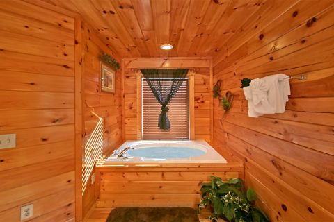 Cabin with private Jacuzzi Tub - Starry Night