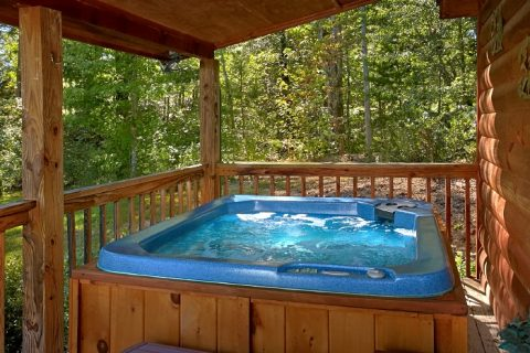 Secluded 2 bedroom cabin with Hot Tub - Sweet Seclusion