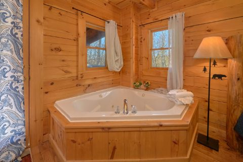 Spacious 1 Bedroom with Queen Bed and Jacuzzi - Tennessee Dreamin