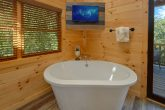 Cabin rental with private tub, TV and King bed
