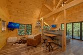 1 bedroom cabin with spacious living room