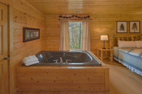 6 Bedroom Master with Jacuzzi Tub and Fireplace - The Big Cozy