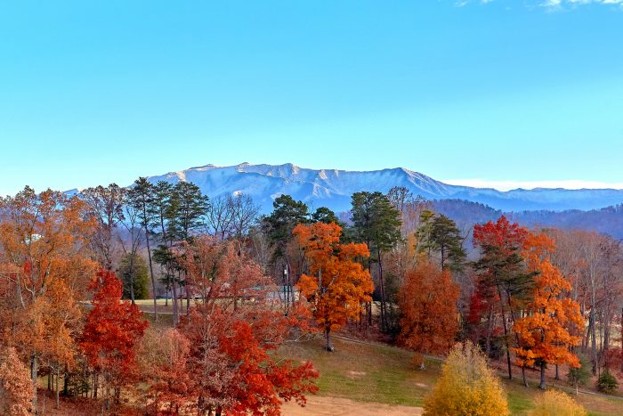 View of the Mountains from 2 bedroom condo - Vista View