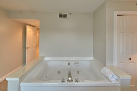 Condo with Jacuzzi Tub and Mountain Views - Vista View