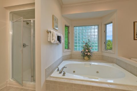 Mater Bathroom with Jacuzzi and Shower - Wow! What A View